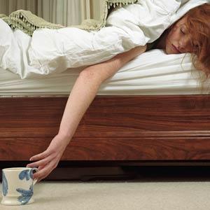 flu-bed[1]
