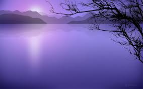 Purple Water -  imagesCA164SCV