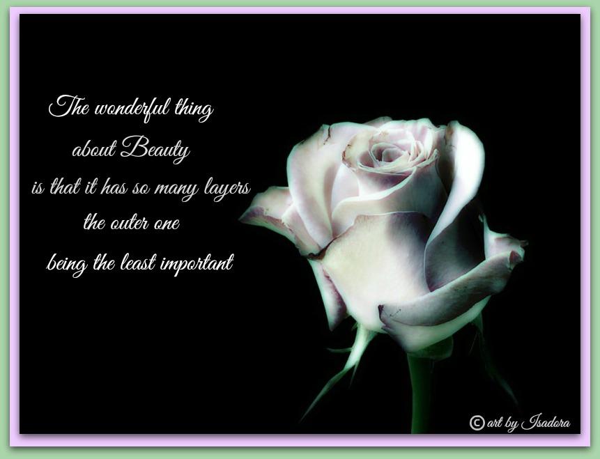 black - white rose.web