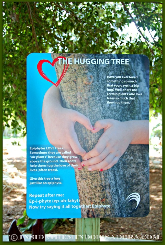 Hugging Tree sign.web