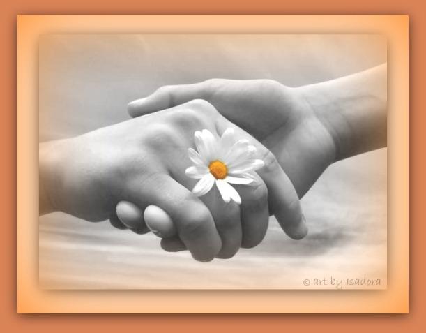 Hand - holding daisy.web
