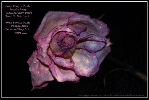 Pink Petal 2-Hurt.web