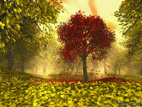 Autumn - friday challenge