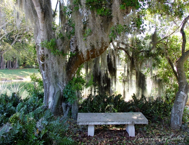 Bench-Peaceful-2-web