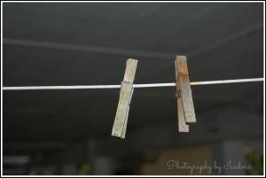 Clothes Pins  (2)web