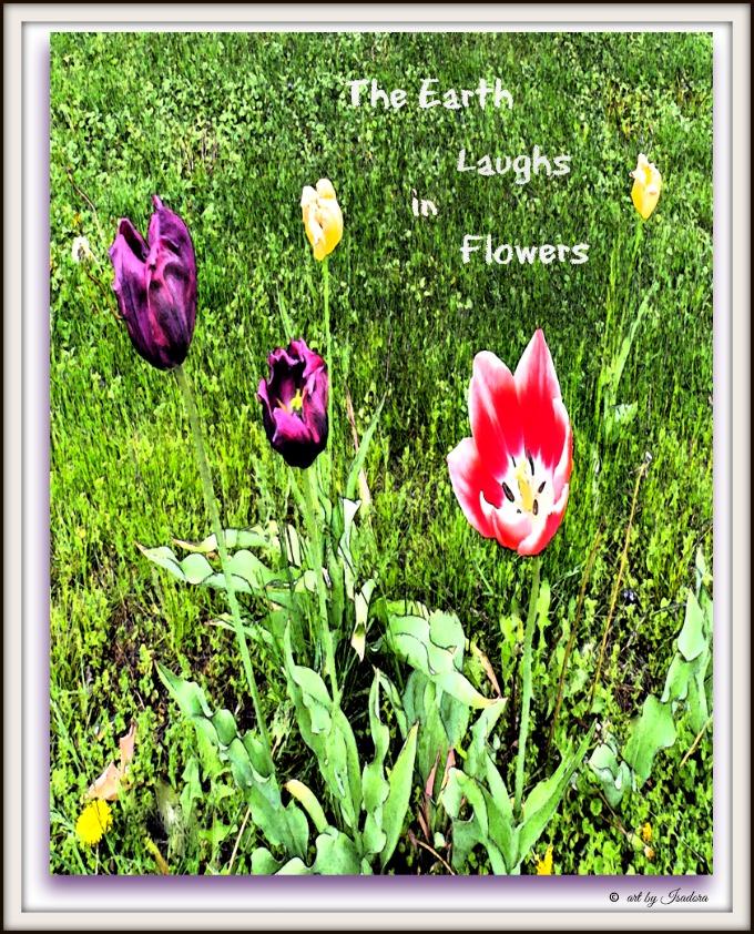 Flowers-2 garden.web