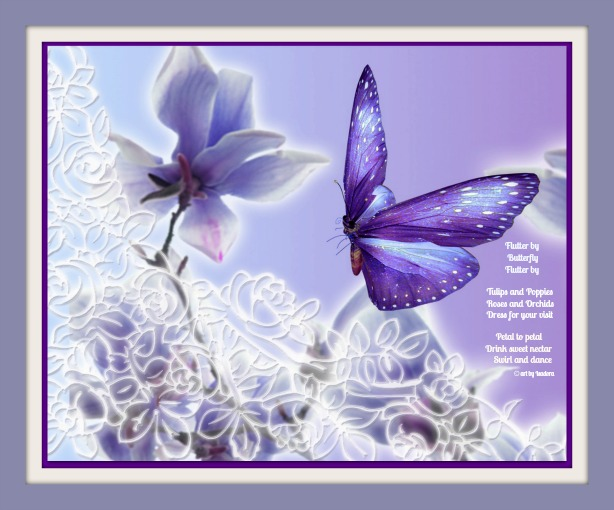 Butterfly-Purple A 614.web
