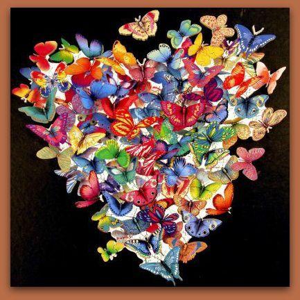 Butterfly heart.web