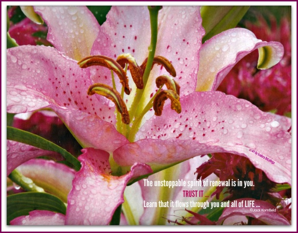 Nurturing-Flower-Renewal-A-April-2016.web