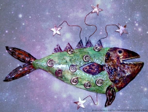 Fish B Stargazer.web