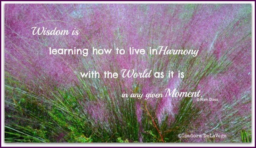 nurture-yourself-lavender-grasses-web