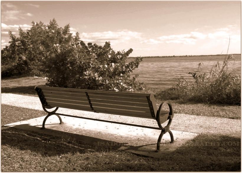 bench-wooden-plumbe-web